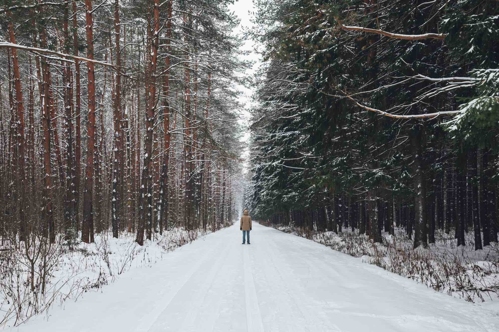 Perfect Winter Activity